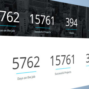 Animated Counters Muse Widget