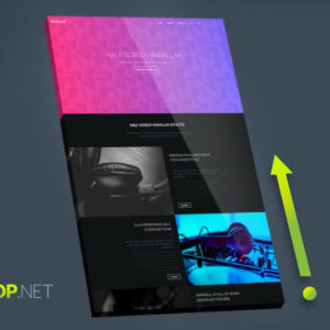 Back to Top Button Muse Widget - Featured Image