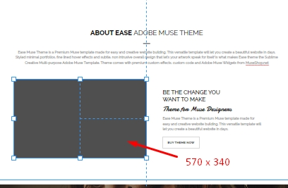 How to Speed Up Your Muse Website | MuseShop Net